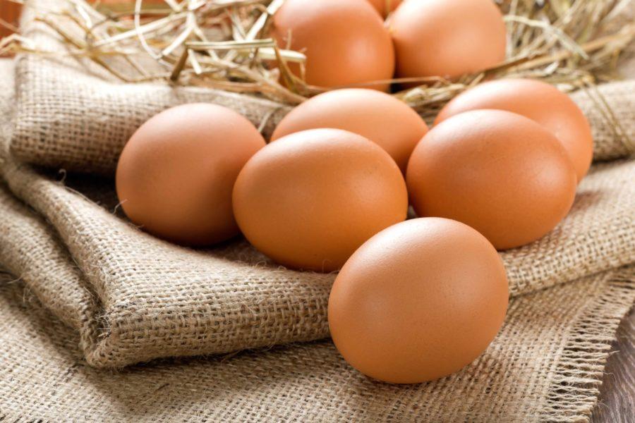 Swissotel Tallinna restoranid kasutavad puurivabast süsteemist pärit kanade mune